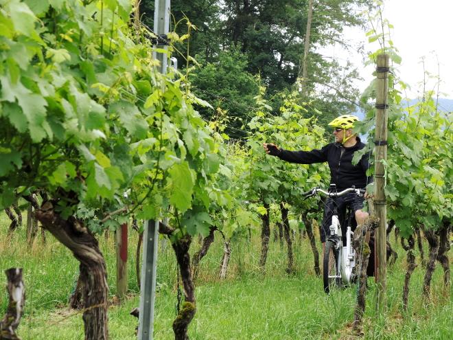 in Svizzera in E-Bike è come sentirsi davvero a casa